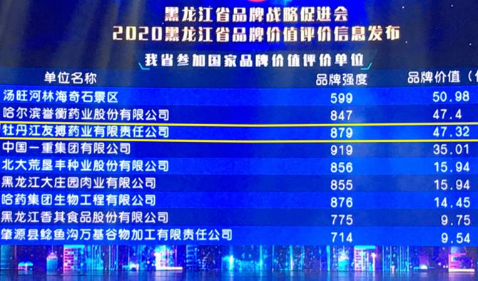 2020黑龙江省品牌价值评价信息发布 友搏药业携手迪龙制药双双上榜